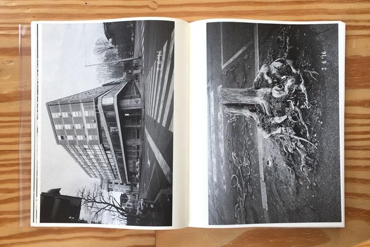 Rome - Malibu thumbnail 4