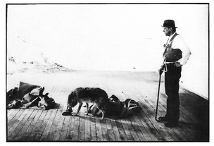 Joseph Beuys Postcard