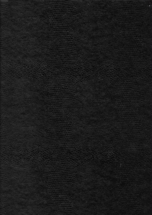 Manual of Instructions for Étant Donnes : 1. La Chute d'aue, 2. Le gaze d'éclairage