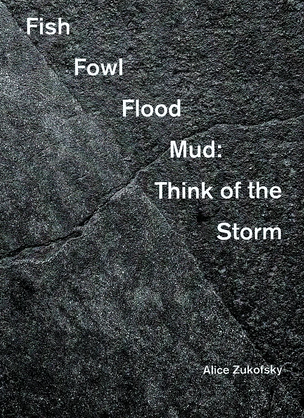 Fish Fowl Flood Mud : Think of the Storm