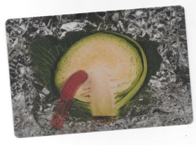 Hot Dog in Cabbage Lenticular