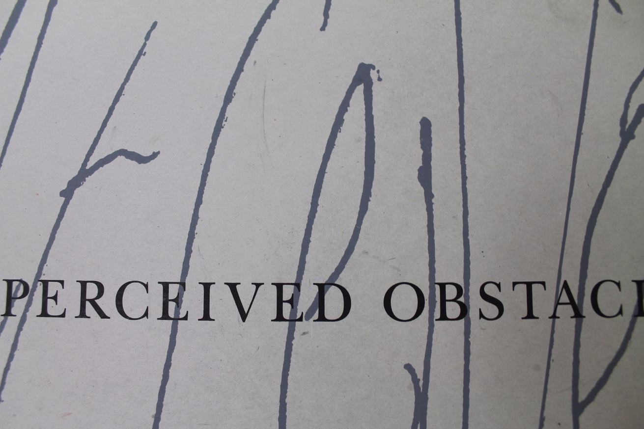 Perceived Obstacles thumbnail 3
